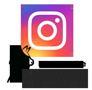 Hobby Horse auf Instagram